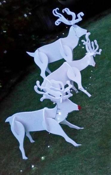 Reindeer with lights s